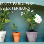 Shopping du lundi : les nouvelles couleurs Farrow and Ball