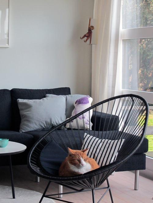 chat et fauteuil acapulco l 39 atelier azimut. Black Bedroom Furniture Sets. Home Design Ideas