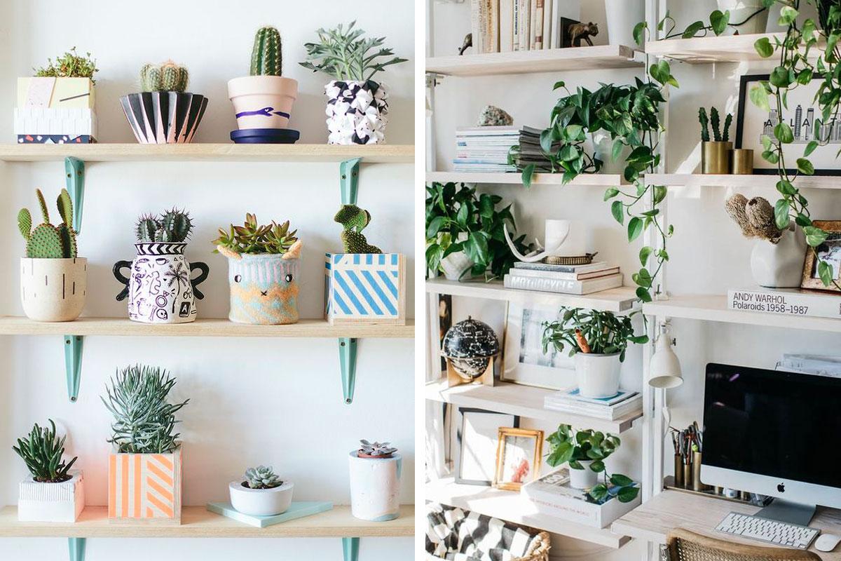 Décoration : 7 façons d'intégrer les plantes dans votre intérieur