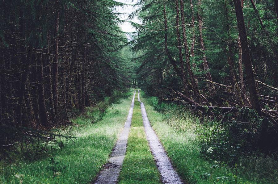 5 articles pour un mode de vie plus responsable