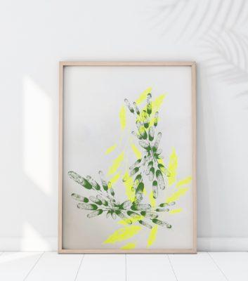 Sérigraphie plantes et fleurs - Atelier Marika